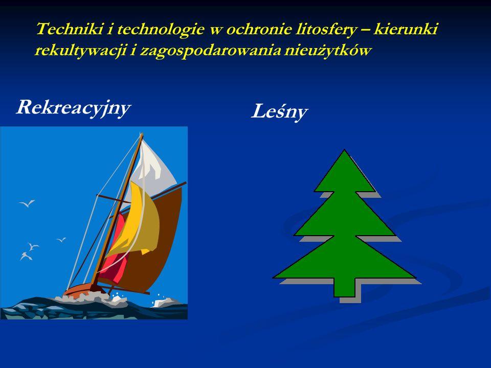 Techniki i technologie w ochronie litosfery – kierunki rekultywacji i zagospodarowania nieużytków Leśny Rekreacyjny
