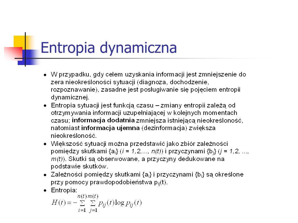 Entropia dynamiczna