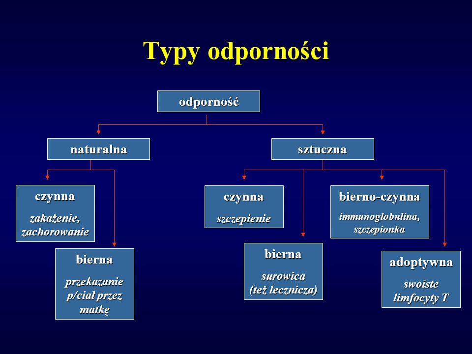 Typy odporności odporność naturalnasztuczna czynnaszczepienie bierna surowica (też lecznicza) bierno-czynna immunoglobulina, szczepionka czynna zakażenie, zachorowanie bierna przekazanie p/ciał przez matkę adoptywna swoiste limfocyty T