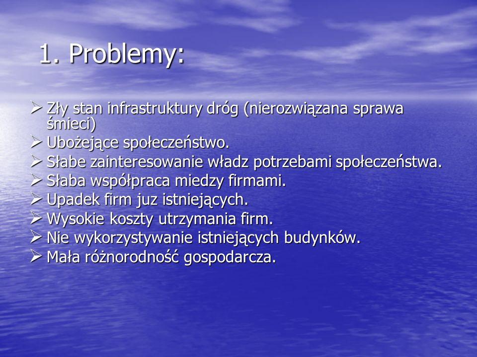 1. Problemy: 1. Problemy: Zły stan infrastruktury dróg (nierozwiązana sprawa śmieci) Zły stan infrastruktury dróg (nierozwiązana sprawa śmieci) Ubożej