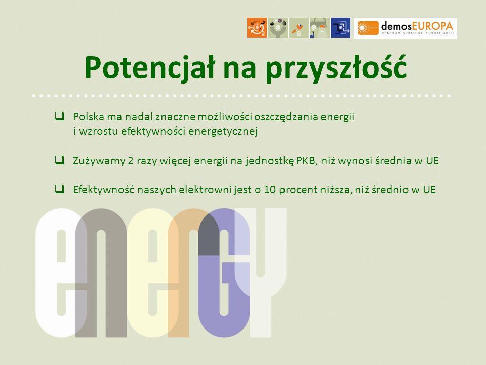 Potencjał na przyszłość Polska ma nadal znaczne możliwości oszczędzania energii i wzrostu efektywności energetycznej Zużywamy 2 razy więcej energii na