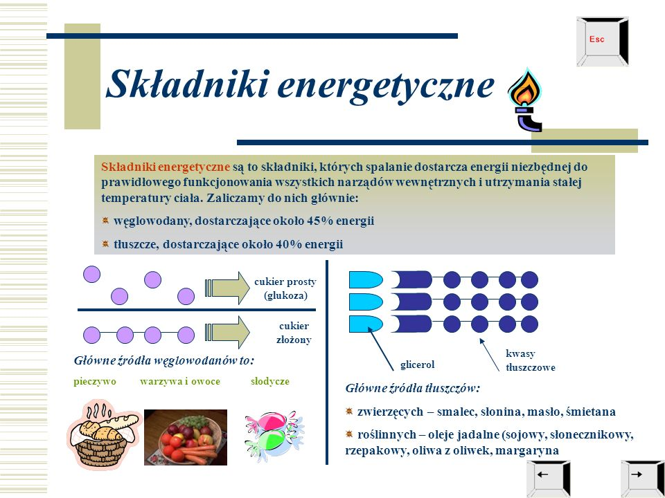 Składniki energetyczne Składniki energetyczne są to składniki, których spalanie dostarcza energii niezbędnej do prawidłowego funkcjonowania wszystkich narządów wewnętrznych i utrzymania stałej temperatury ciała.