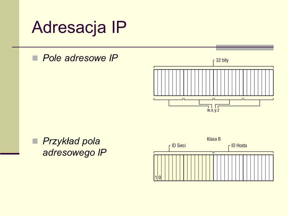 Adresacja IP Pole adresowe IP Przykład pola adresowego IP