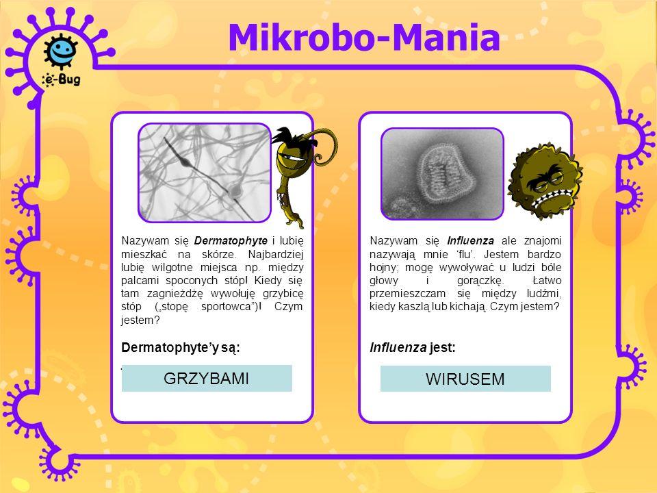 Mikrobo-Mania Nazywam się Dermatophyte i lubię mieszkać na skórze. Najbardziej lubię wilgotne miejsca np. między palcami spoconych stóp! Kiedy się tam