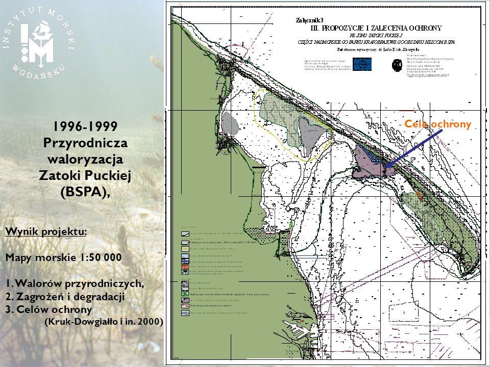 Wynik projektu: Mapy morskie 1:50 000 1. Walorów przyrodniczych, 2. Zagrożeń i degradacji 3. Celów ochrony (Kruk-Dowgiałło i in. 2000) 1996-1999 Przyr