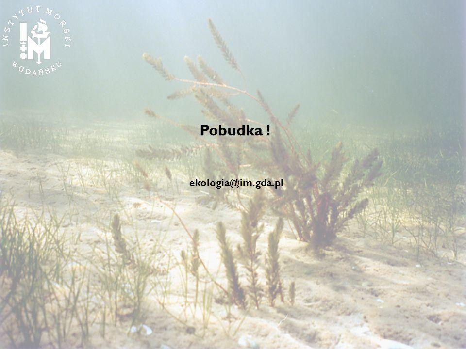 Pobudka ! ekologia@im.gda.pl