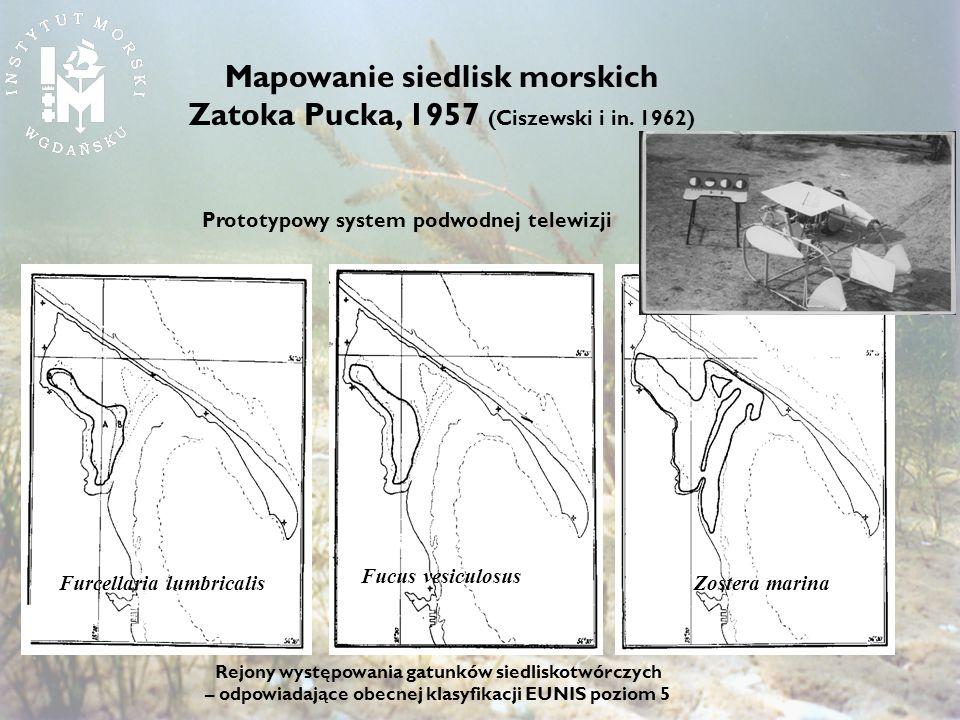 Rejony występowania gatunków siedliskotwórczych – odpowiadające obecnej klasyfikacji EUNIS poziom 5 Furcellaria lumbricalis Fucus vesiculosus Mapowani