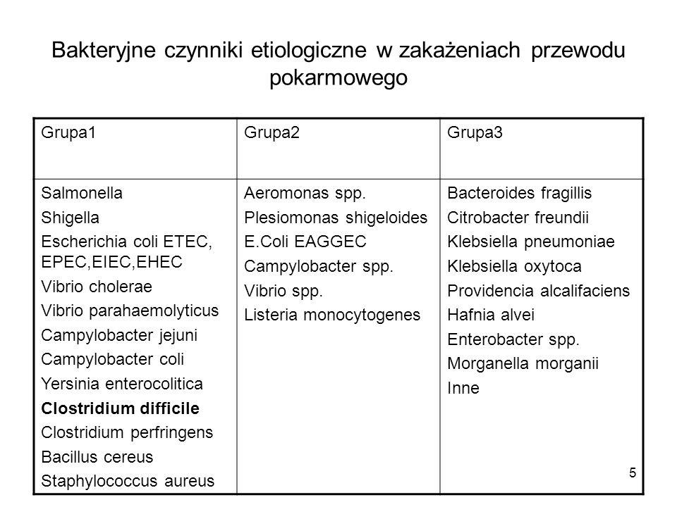 5 Bakteryjne czynniki etiologiczne w zakażeniach przewodu pokarmowego Grupa1Grupa2Grupa3 Salmonella Shigella Escherichia coli ETEC, EPEC,EIEC,EHEC Vib