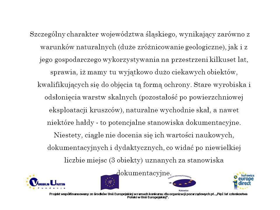 Szczególny charakter województwa śląskiego, wynikający zarówno z warunków naturalnych (duże zróżnicowanie geologiczne), jak i z jego gospodarczego wyk