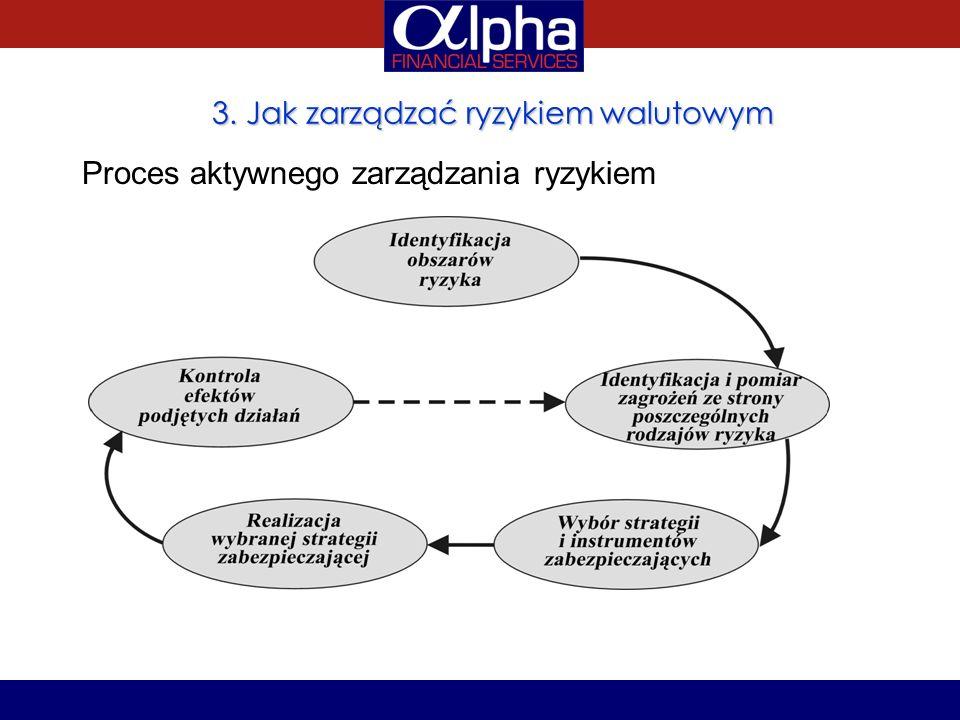 3. Jak zarządzać ryzykiem walutowym Proces aktywnego zarządzania ryzykiem