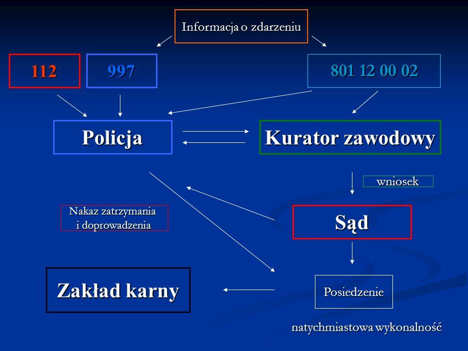 Policja Kurator zawodowy Sąd Posiedzenie Zakład karny Informacja o zdarzeniu wniosek Nakaz zatrzymania i doprowadzenia natychmiastowa wykonalność 801