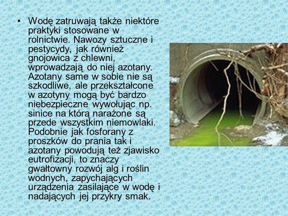 Zarówno wody powierzchniowe jak i podziemne są już zanieczyszczone, należy więc zaprzestać wrzucania do nich toksycznych odpadów i poprawić metody uzdatniania.