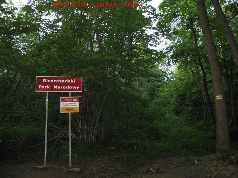 Wejście do Parku – regulamin – zakazy.