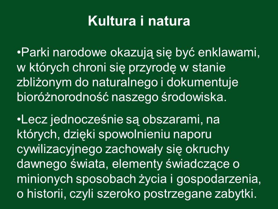 Kultura i natura Parki narodowe okazują się być enklawami, w których chroni się przyrodę w stanie zbliżonym do naturalnego i dokumentuje bioróżnorodno