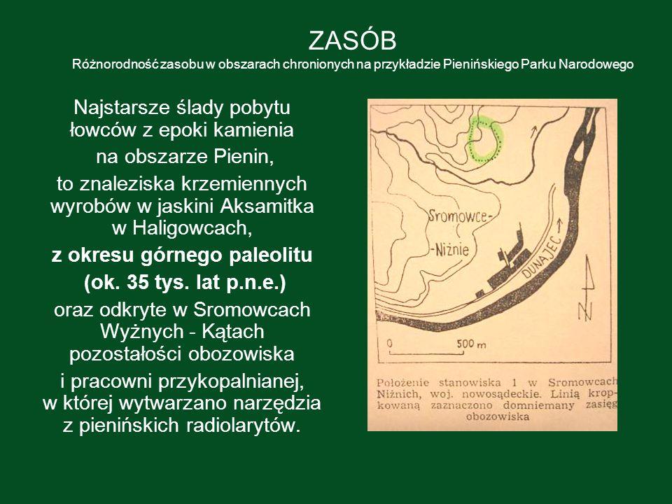 ZASÓB Różnorodność zasobu w obszarach chronionych na przykładzie Pienińskiego Parku Narodowego Najstarsze ślady pobytu łowców z epoki kamienia na obsz