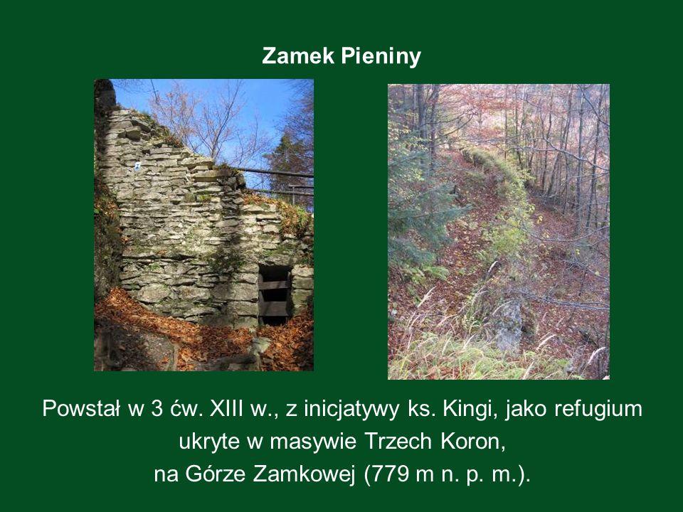 Zamek Pieniny Powstał w 3 ćw. XIII w., z inicjatywy ks. Kingi, jako refugium ukryte w masywie Trzech Koron, na Górze Zamkowej (779 m n. p. m.).