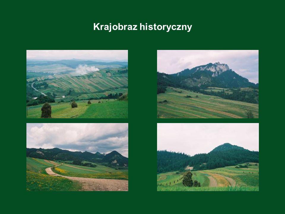 Krajobraz historyczny