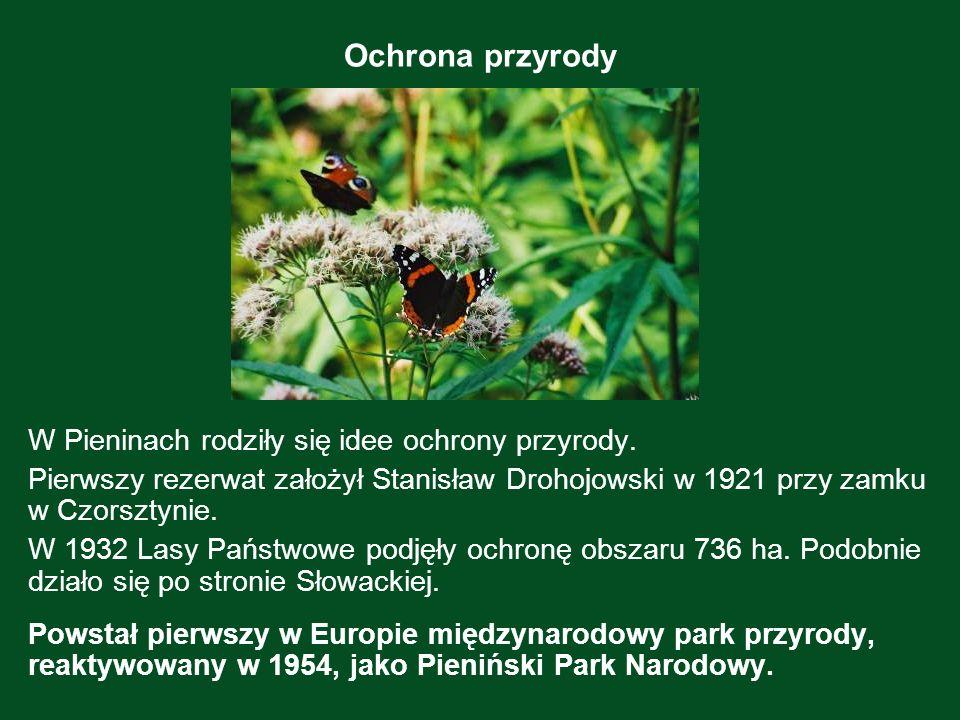 Ochrona przyrody W Pieninach rodziły się idee ochrony przyrody. Pierwszy rezerwat założył Stanisław Drohojowski w 1921 przy zamku w Czorsztynie. W 193