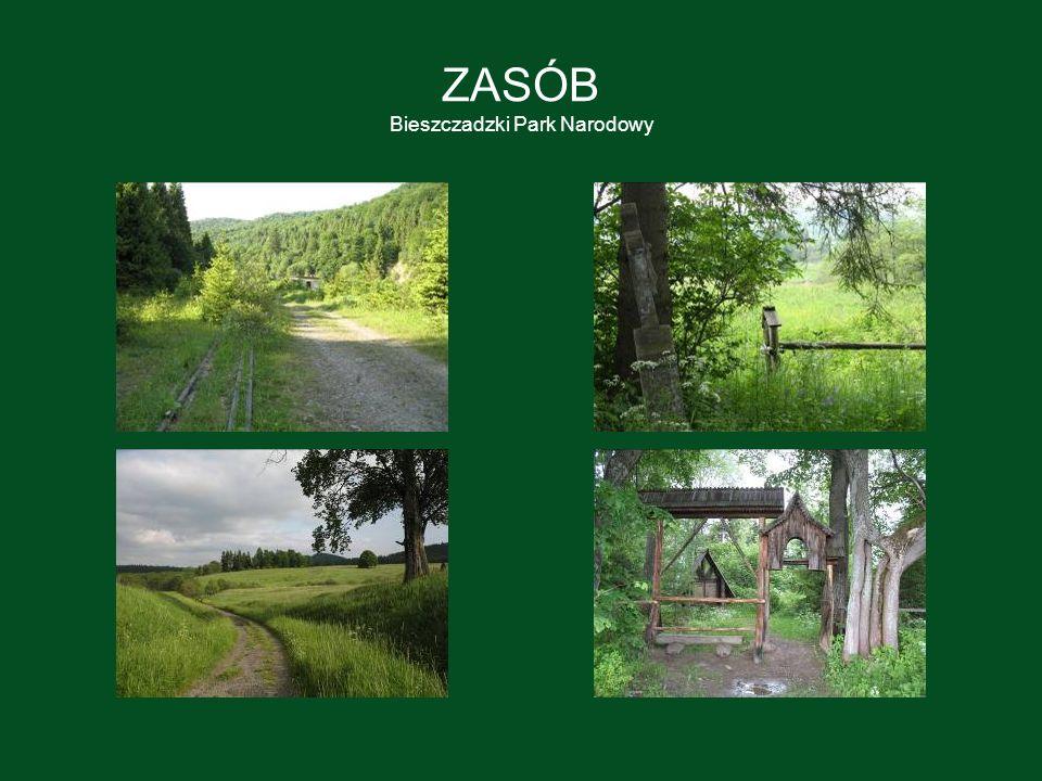 ZASÓB Bieszczadzki Park Narodowy
