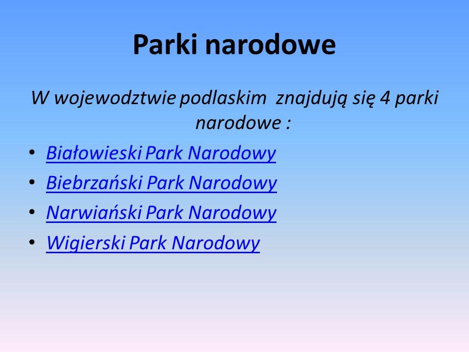Parki narodowe W wojewodztwie podlaskim znajdują się 4 parki narodowe : Białowieski Park Narodowy Biebrzański Park Narodowy Narwiański Park Narodowy W