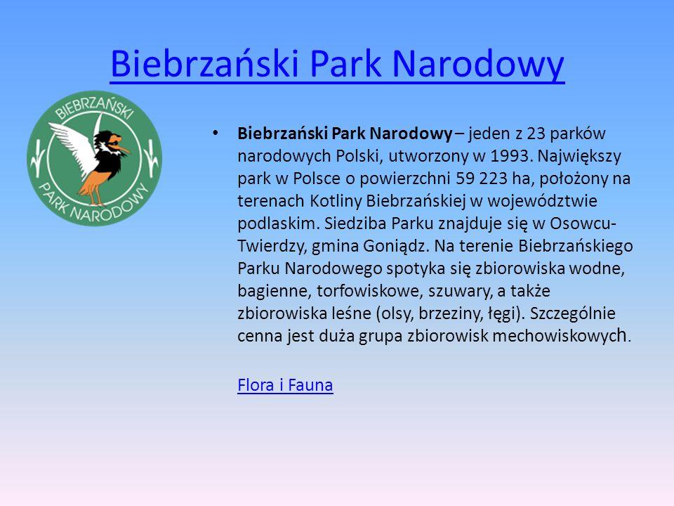 Biebrzański Park Narodowy Biebrzański Park Narodowy – jeden z 23 parków narodowych Polski, utworzony w 1993. Największy park w Polsce o powierzchni 59