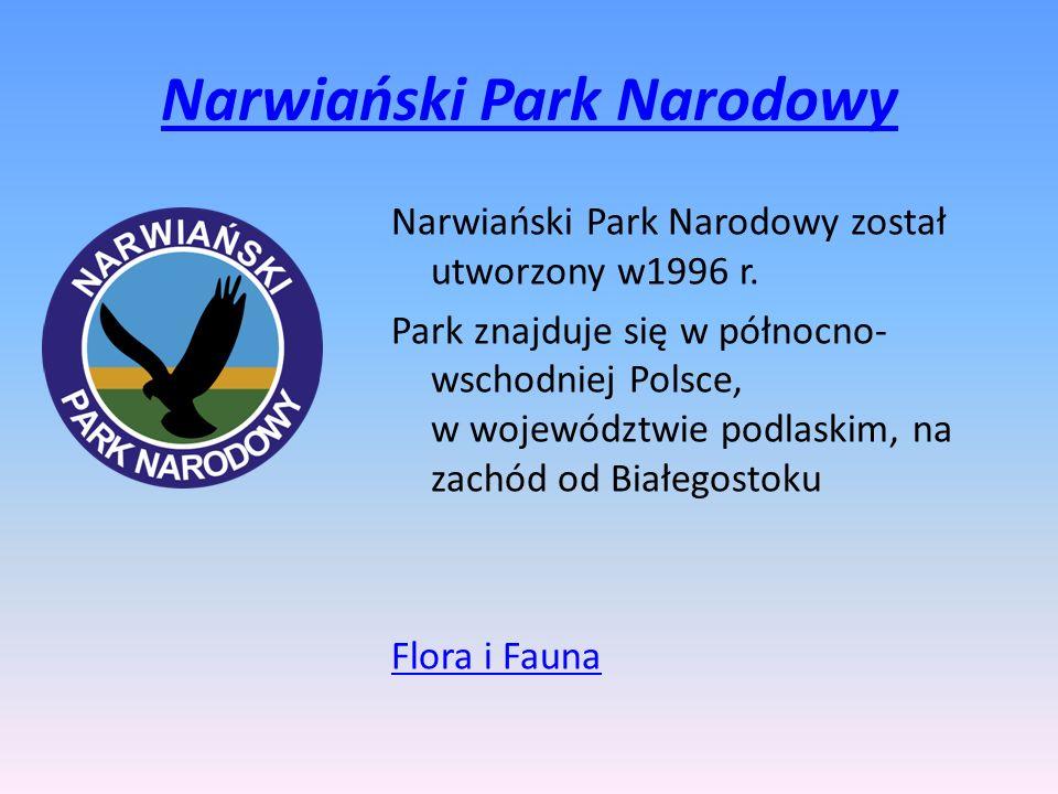 Narwiański Park Narodowy Narwiański Park Narodowy został utworzony w1996 r. Park znajduje się w północno- wschodniej Polsce, w województwie podlaskim,