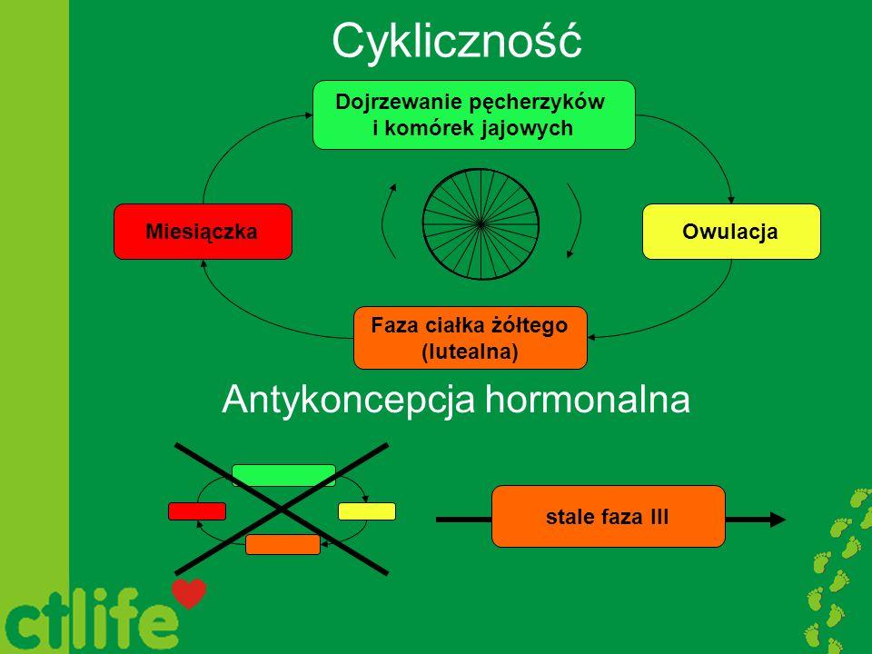 Cykliczność Antykoncepcja hormonalna Miesiączka Dojrzewanie pęcherzyków i komórek jajowych Owulacja Faza ciałka żółtego (lutealna) stale faza III