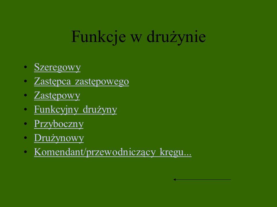 Funkcje w drużynie Szeregowy Zastępca zastępowego Zastępowy Funkcyjny drużyny Przyboczny Drużynowy Komendant/przewodniczący kręgu...