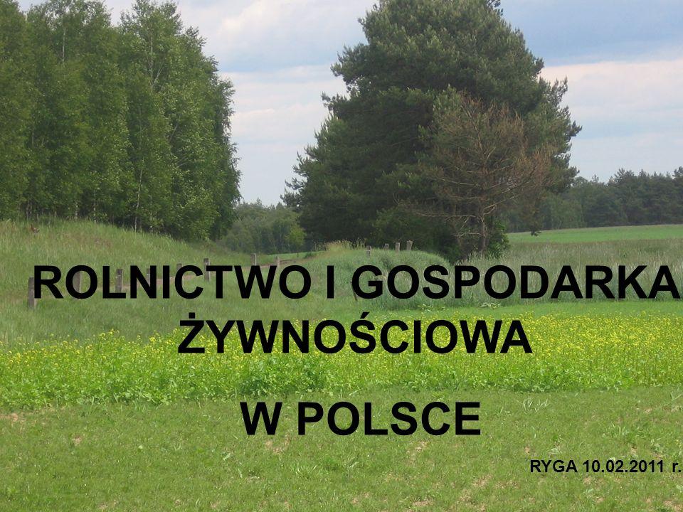 Pogłowie bydła, krów i trzody chlewnej na 100 ha UR wg. Województw w 2007 i 2008 r./ (w szt.)
