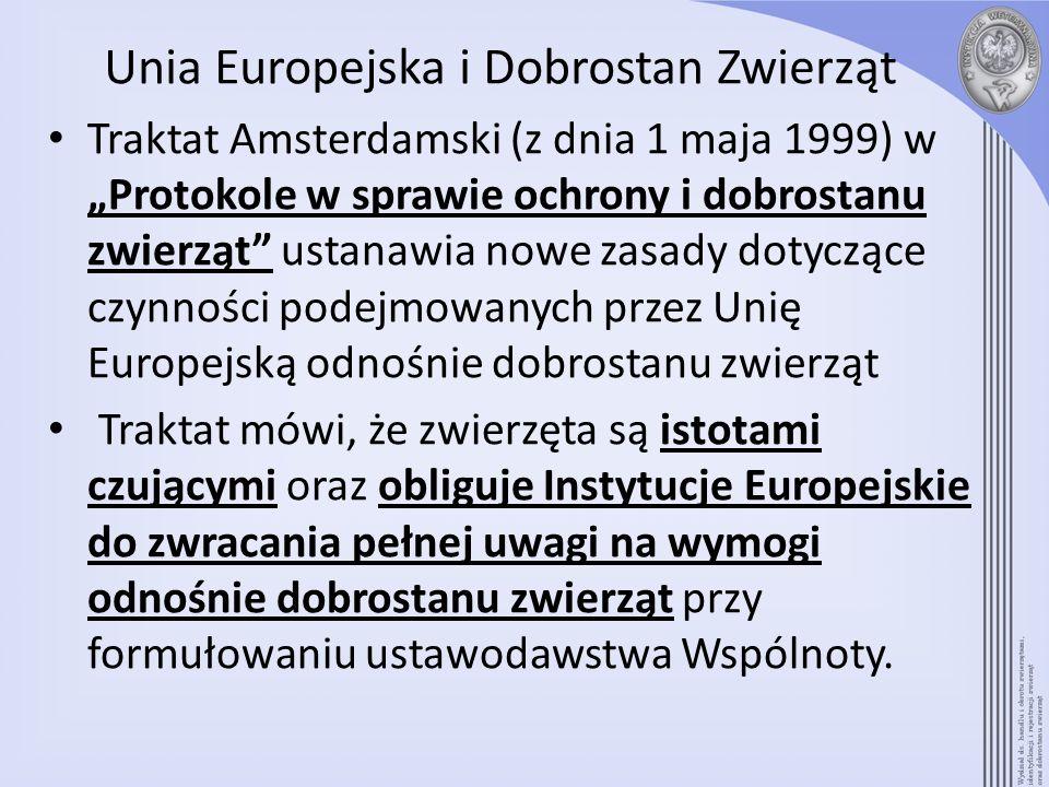 Unia Europejska i Dobrostan Zwierząt Traktat Amsterdamski (z dnia 1 maja 1999) w Protokole w sprawie ochrony i dobrostanu zwierząt ustanawia nowe zasa