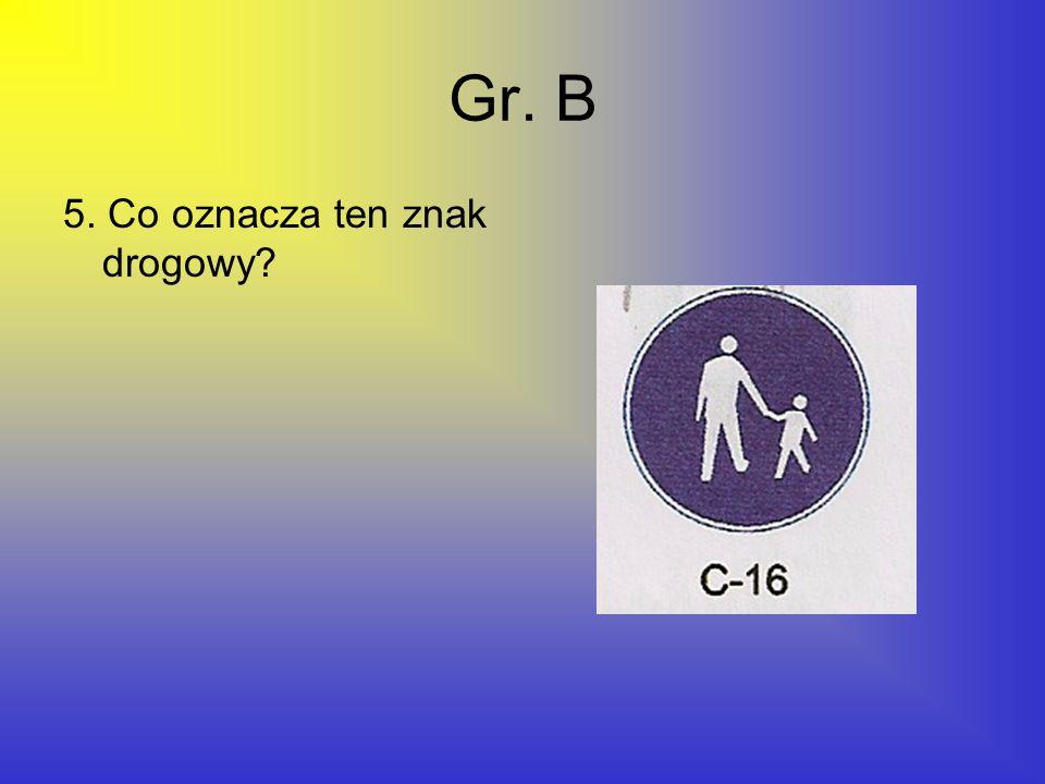 Gr. B 5. Co oznacza ten znak drogowy?