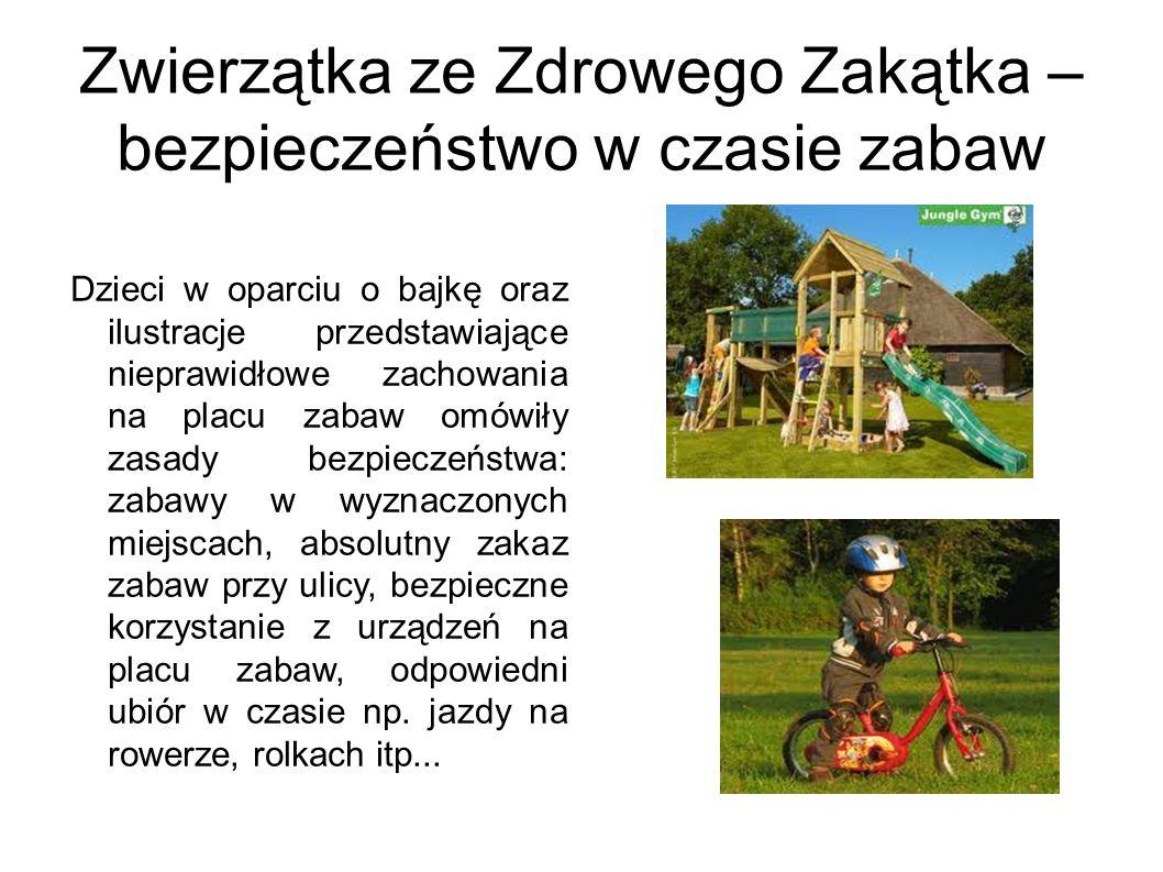Zwierzątka ze Zdrowego Zakątka – bezpieczeństwo w czasie zabaw Dzieci w oparciu o bajkę oraz ilustracje przedstawiające nieprawidłowe zachowania na pl