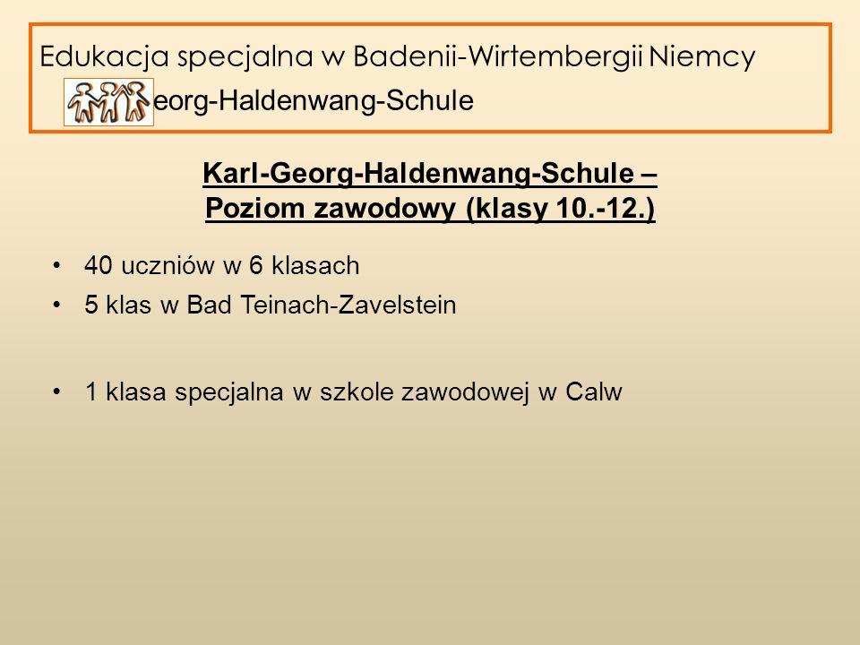 Edukacja specjalna w Badenii-Wirtembergii Niemcy Karl-Georg-Haldenwang-Schule Karl-Georg-Haldenwang-Schule – Poziom zawodowy (klasy 10.-12.) 40 ucznió