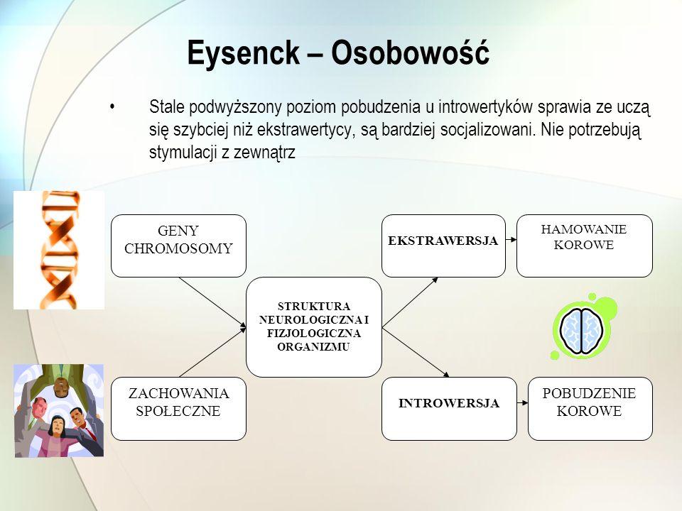 Eysenck – Osobowość Stale podwyższony poziom pobudzenia u introwertyków sprawia ze uczą się szybciej niż ekstrawertycy, są bardziej socjalizowani. Nie