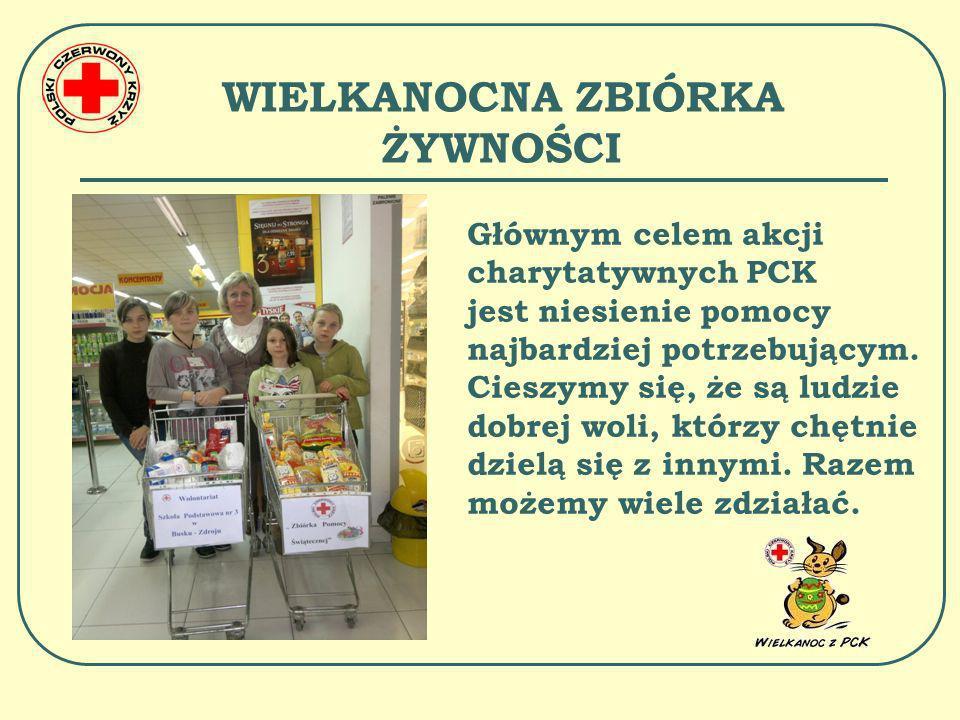 PIKNIK INTEGRACYJNY SK PCK W czerwcu 2012 r.