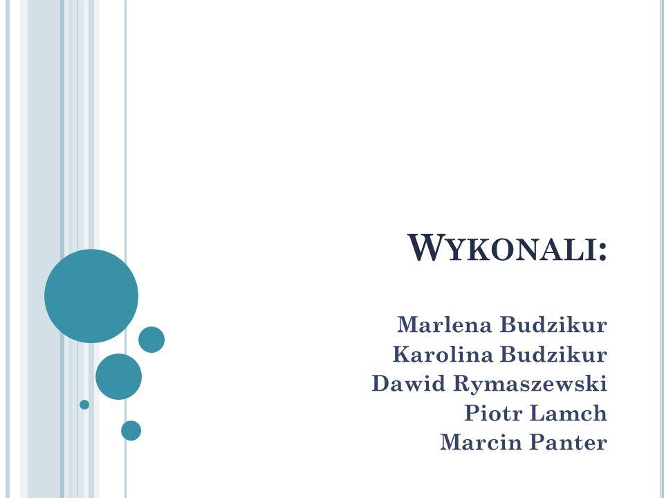 W YKONALI : Marlena Budzikur Karolina Budzikur Dawid Rymaszewski Piotr Lamch Marcin Panter