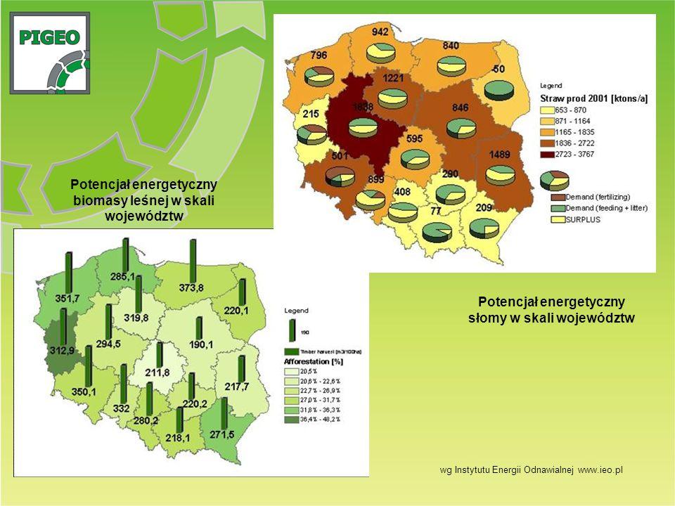 Potencjał energetyczny biomasy leśnej w skali województw Potencjał energetyczny słomy w skali województw wg Instytutu Energii Odnawialnej www.ieo.pl