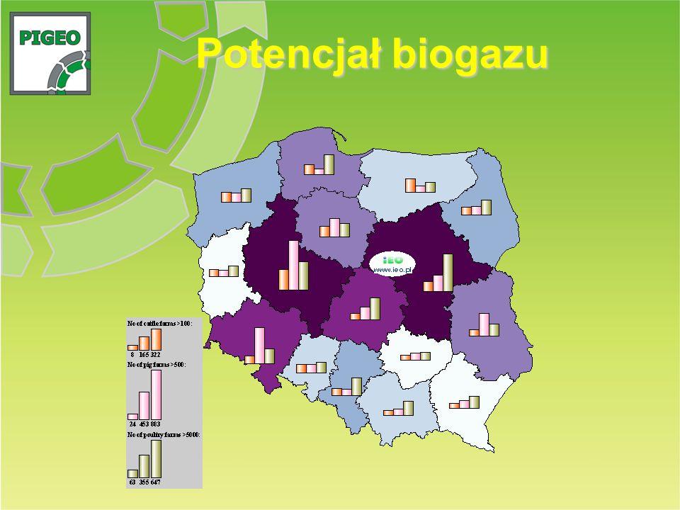 Potencjał biogazu