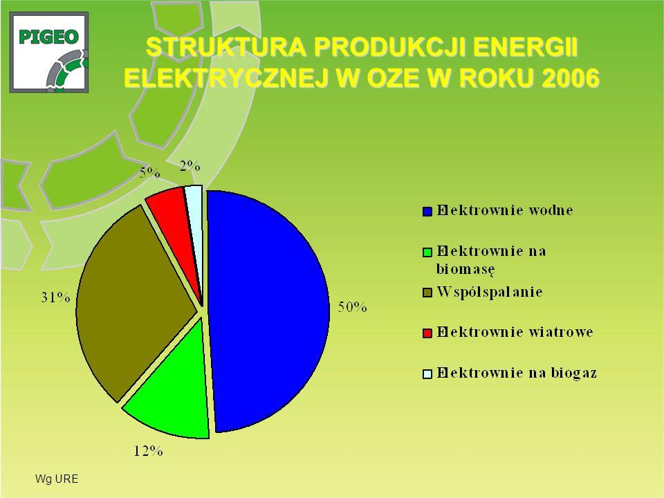 STRUKTURA PRODUKCJI ENERGII ELEKTRYCZNEJ W OZE W ROKU 2006 Wg URE