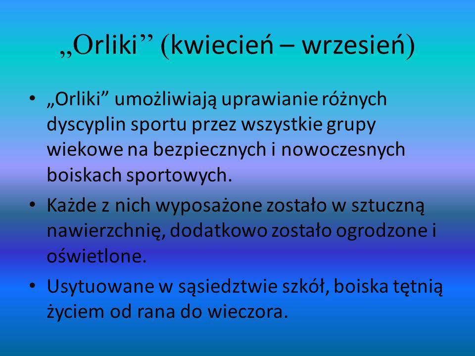 O rliki ( kwiecień – wrzesień ) Orliki umożliwiają uprawianie różnych dyscyplin sportu przez wszystkie grupy wiekowe na bezpiecznych i nowoczesnych bo