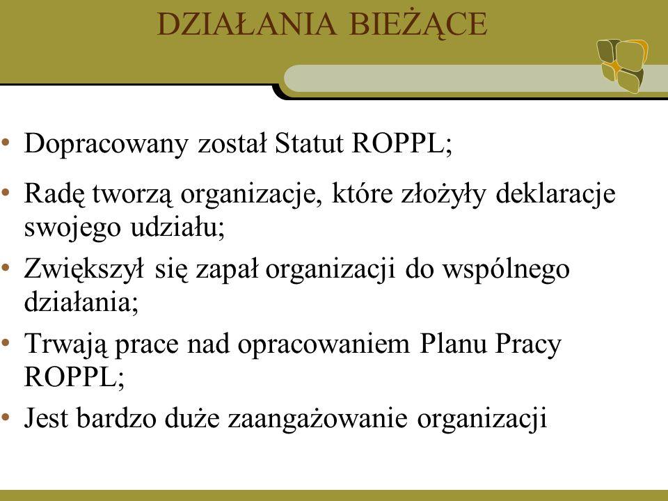 DZIAŁANIA BIEŻĄCE Dopracowany został Statut ROPPL; Radę tworzą organizacje, które złożyły deklaracje swojego udziału; Zwiększył się zapał organizacji do wspólnego działania; Trwają prace nad opracowaniem Planu Pracy ROPPL; Jest bardzo duże zaangażowanie organizacji