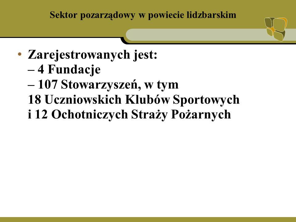 Sektor pozarządowy w powiecie lidzbarskim 49 organizacji ma swoją siedzibę w Lidzbarku Warmińskim 25 organizacji ma swoją siedzibę w Ornecie Pozostałe 33 są to organizacje wiejskie, z czego 11 w gminie Lidzbark Warmiński, w pozostałych gminach równomiernie 3 Fundacje mają swoją siedzibę w Lidzbarku Warmińskim i 1 na terenach wiejskich.