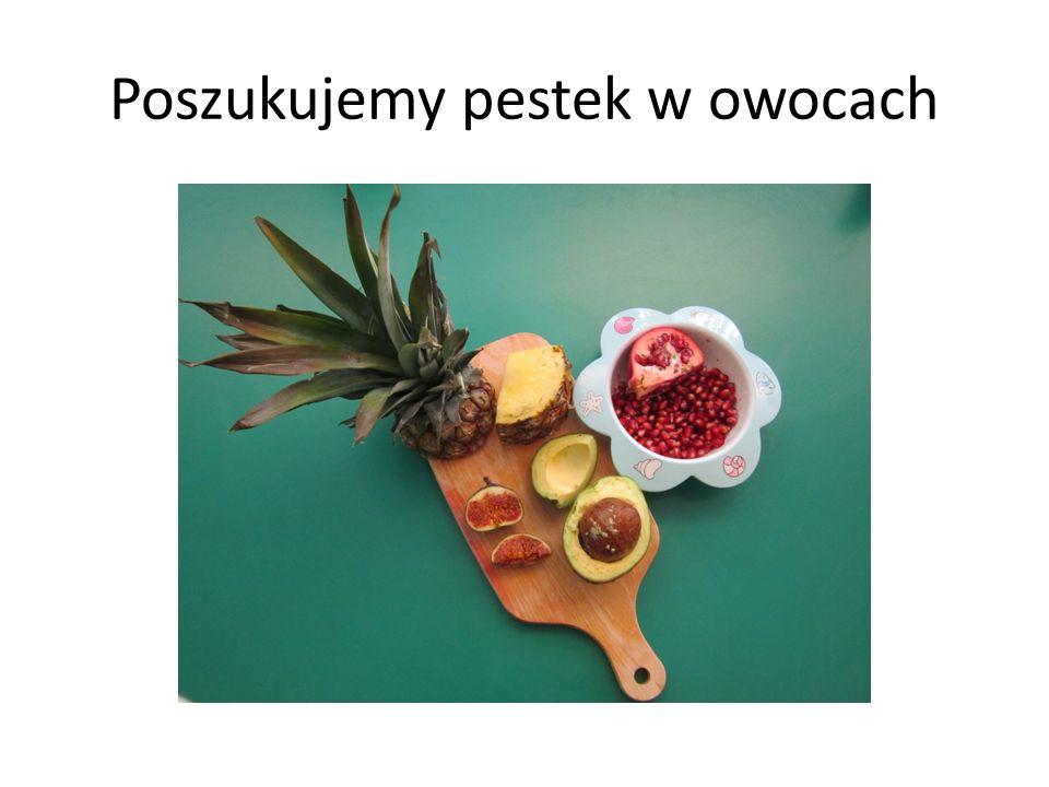 Poszukujemy pestek w owocach