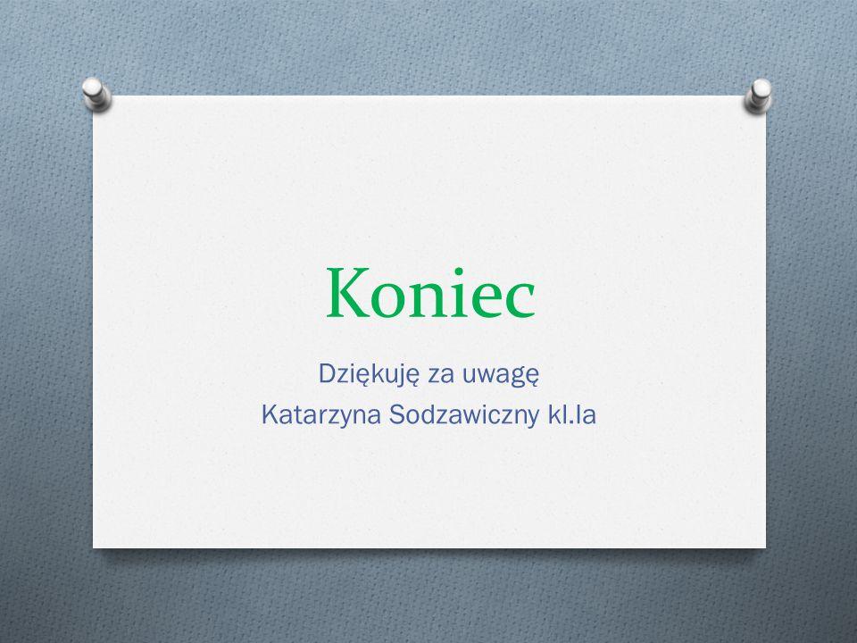Koniec Dziękuję za uwagę Katarzyna Sodzawiczny kl.Ia