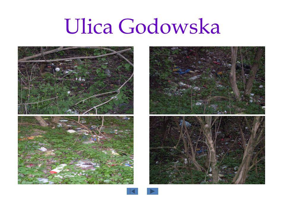 Ulica Godowska