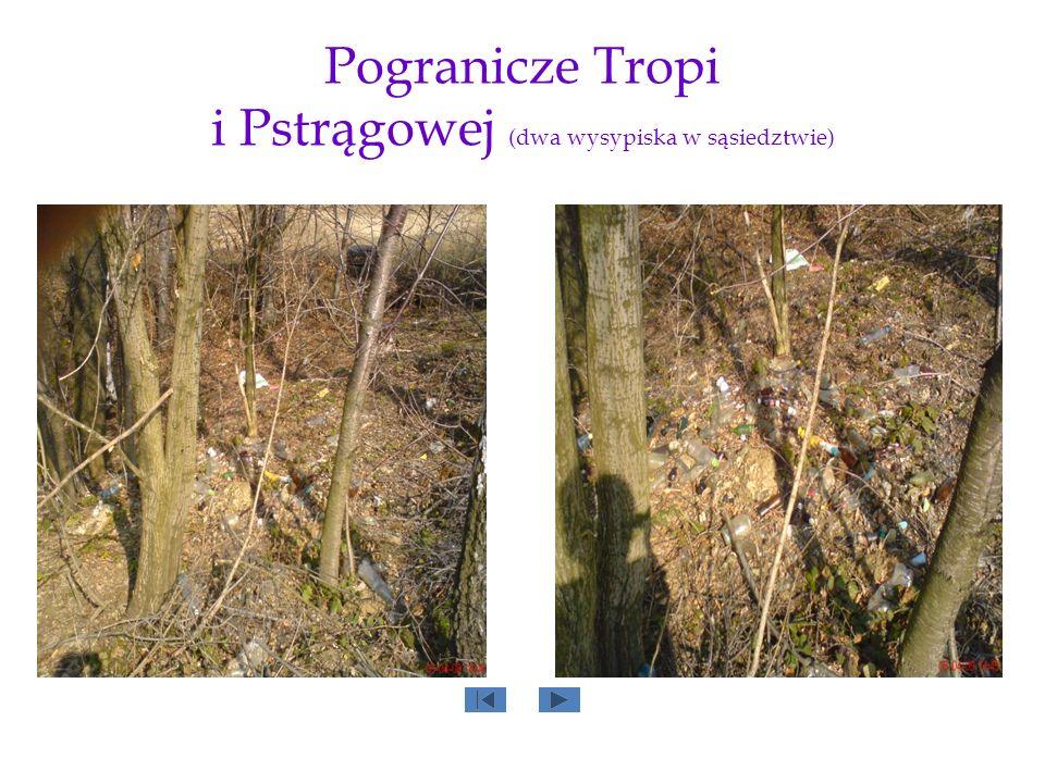 Pogranicze Tropi i Pstrągowej (dwa wysypiska w sąsiedztwie)