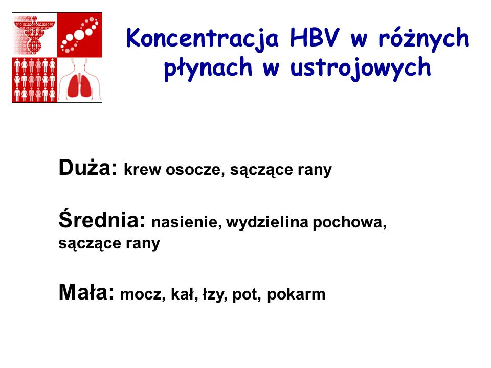 Koncentracja HBV w różnych płynach w ustrojowych Duża: krew osocze, sączące rany Średnia: nasienie, wydzielina pochowa, sączące rany Mała: mocz, kał,