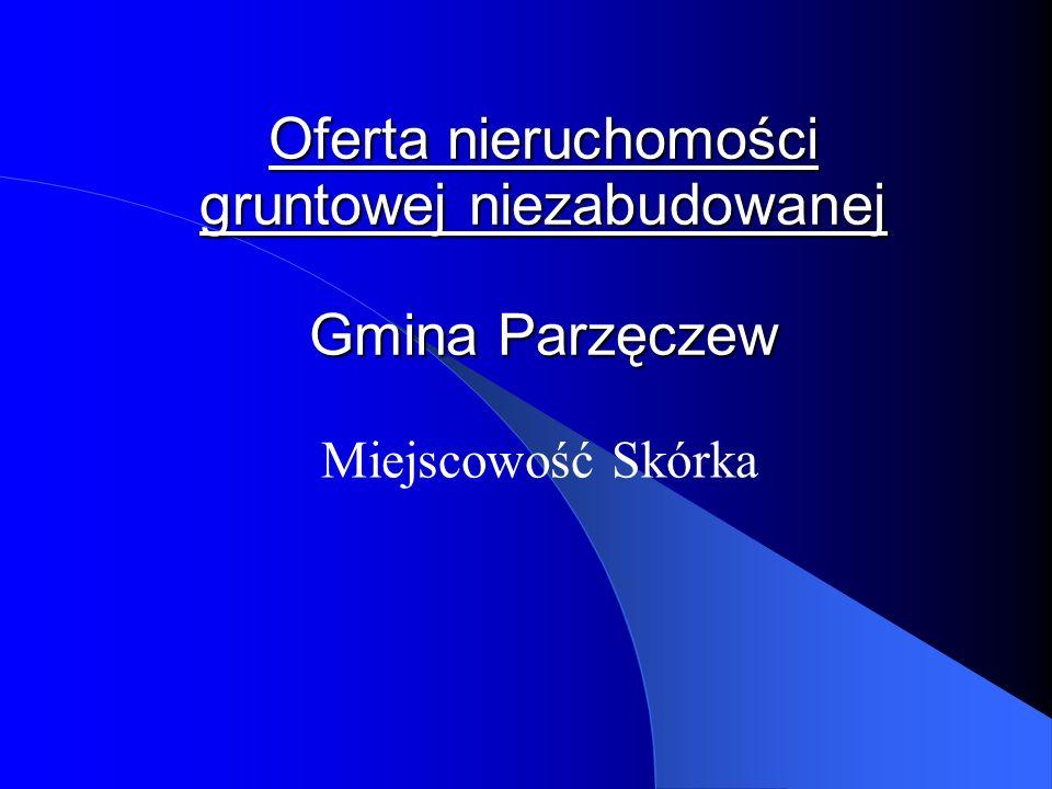 Oferta nieruchomości gruntowej niezabudowanej Gmina Parzęczew Miejscowość Skórka