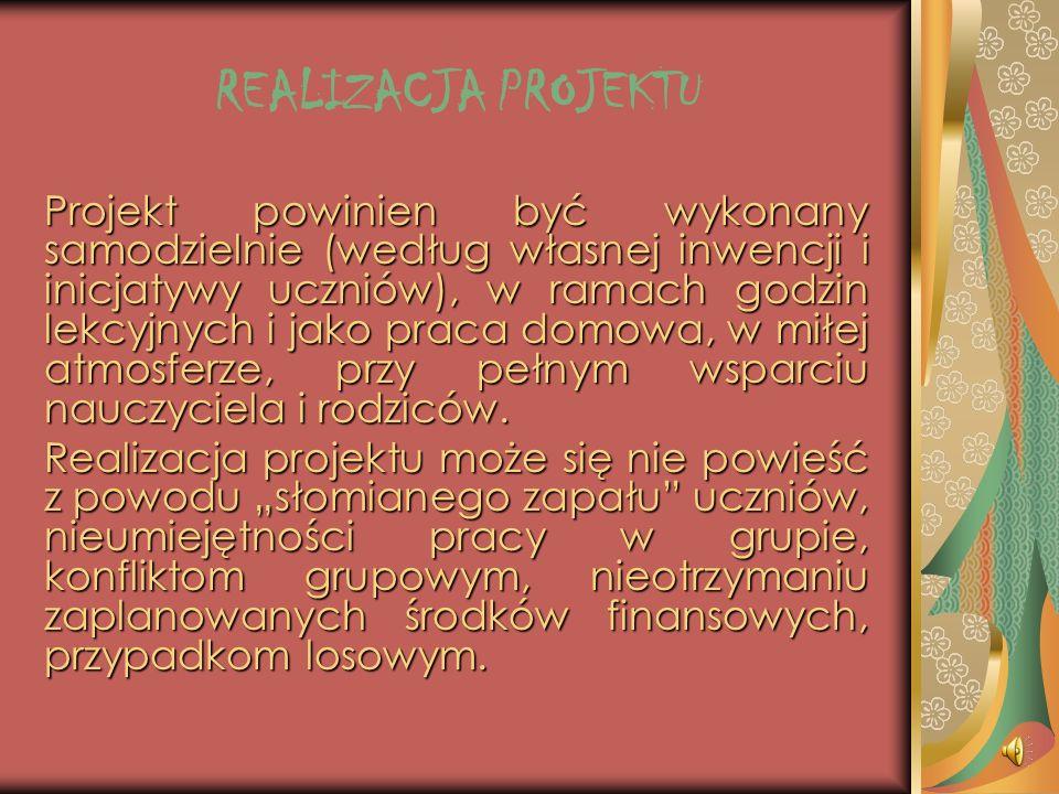 PROGRAM PROJEKTU I HARMONOGRAM DZIA Ł A Ń Elementy projektu : 1. opisanie problemu; 2. zdefiniowanie i uszczegółowienie celów projektu; 3. propozycja