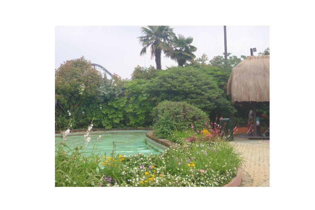 Woda to ż ycie w ka ż dym ogrodzie Elementy wodne w ogrodach -przykłady